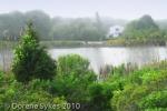 2-Lagoon